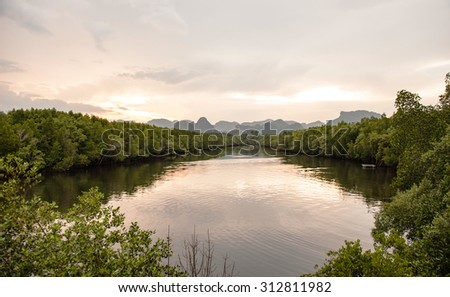 During sunset at  mangrove forest along the river to the end of view at the mountain  - stock photo