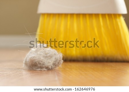 Dust Bunny and a broom - stock photo
