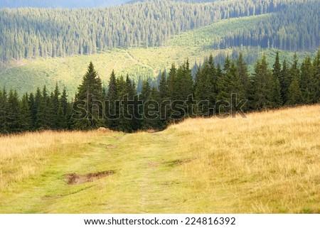 Dust mountain road - stock photo