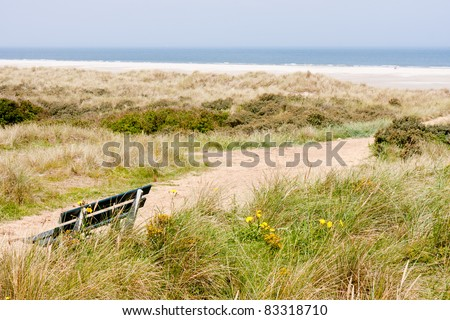 Dutch coast with dunes and beach - stock photo