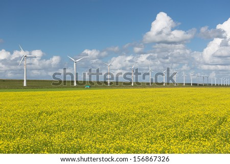 Dutch countryside landscape with rapeseed and wind turbines - stock photo