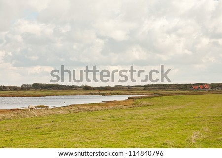 Dutch farmland with stormy blue cloudy sky. Puddle in field of grass. Wadden island. Texel. The Netherlands. - stock photo