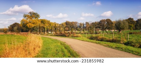 Dutch landscape with road and meadow. brabant netherlands - stock photo