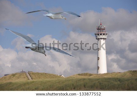 Dutch Light house with seagulls - stock photo