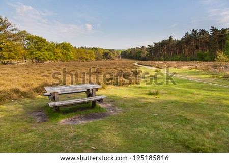 Dutch Natural Heathland Reserve Schaapdrift on Warnsborn Estate near Arnhem - stock photo