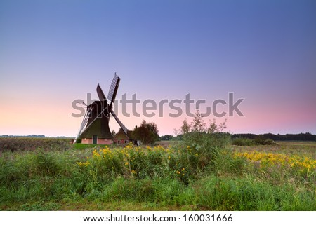 Dutch windmill on flowering meadow at sunrise, Holland