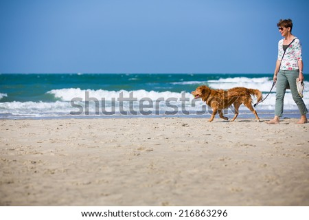 Dutch woman walking at the beach in Zeeland, Netherlands, on a bright summer day, playing with the dog having fun - stock photo