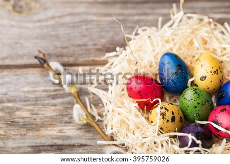 Dyed quail eggs in a nest with willow branch on wooden background. Easter eggs