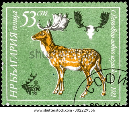 DZERZHINSK, RUSSIA - FEBRUARY 11, 2016: A postage stamp of BULGARIA shows deer, circa 1981 - stock photo