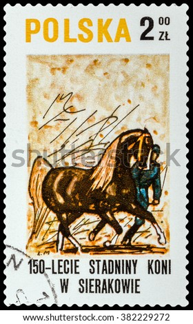 DZERZHINSK, RUSSIA - FEBRUARY 11, 2016: A postage stamp of POLAND shows devoted 150 Years of Stud in Sierakow, circa 1980 - stock photo