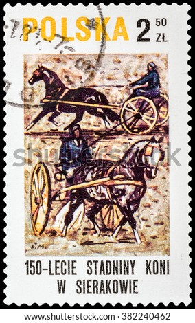 "DZERZHINSK, RUSSIA - FEBRUARY 11, 2016: A postage stamp of POLAND shows Trotters with inscription ""Sierakov horse stud farm, 150th anniv"", circa 1980 - stock photo"