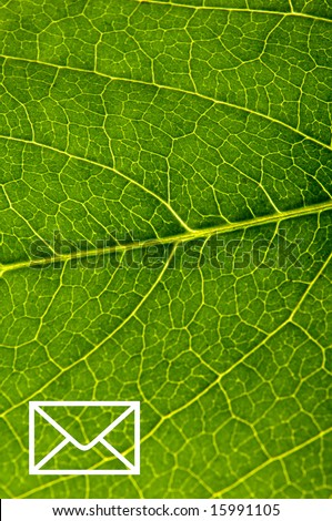 E-mail sign on green leaf closeup - stock photo