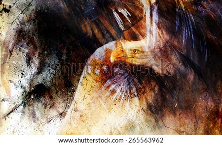 eagle , black and color feathers abstract background , collage painting , USA Symbols Freedom - stock photo