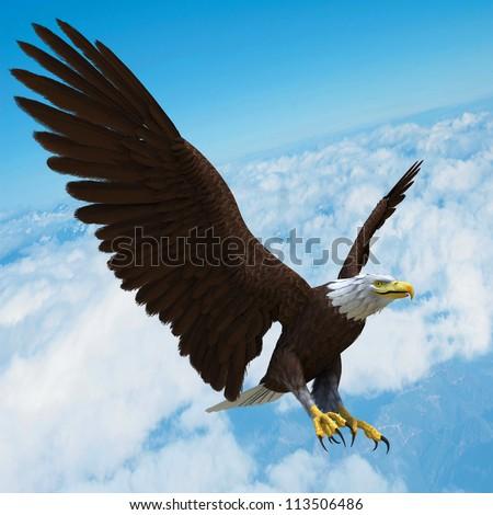 eagle in blue sky - stock photo