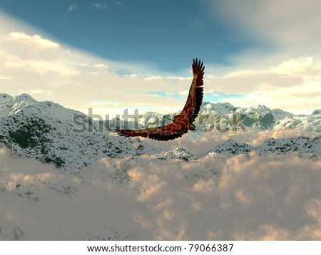 eagle in the cold mountains - stock photo