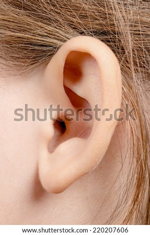 Ear girl close-up - stock photo