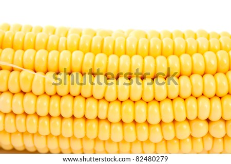 ear of corn on a white background - stock photo