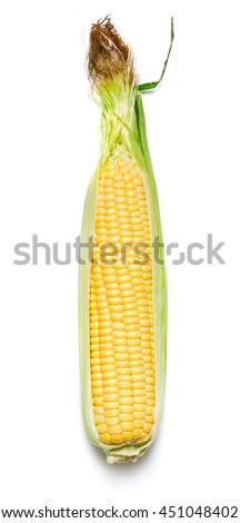 Ear of corn on white background - stock photo