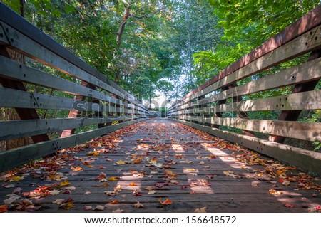 Early autumn scenery in Toronto, Canada - stock photo