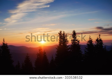Early morning beautiful sunrise. Silhouette of pine forest in the foreground