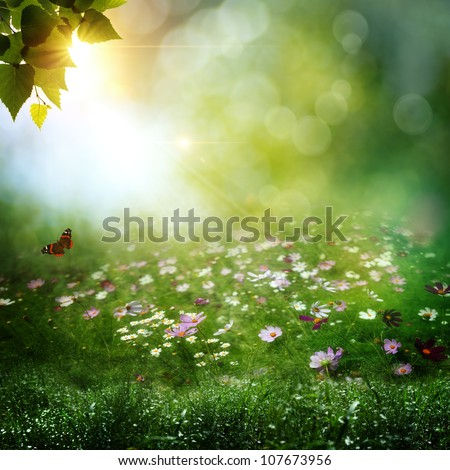 Early morning in the deep forest. Abstract natural backgrounds - stock photo