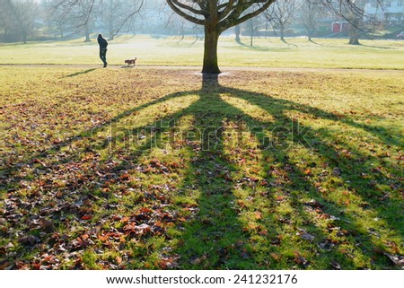 Early morning in the park - stock photo