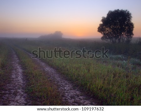 Early morning landscape with fog and road.