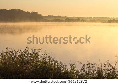 Early morning on the lake. Fog on a lake in light of golden sun - stock photo