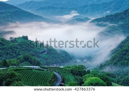 Early morning scenery of tea gardens in fresh spring atmosphere with ethereal fog in the distant valley in Ping-ling, a rural town near Taipei, Taiwan - stock photo