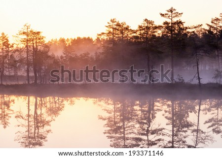 Early morning sunrice at the forest lake - stock photo
