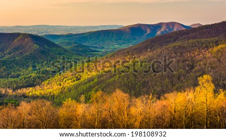 Early morning view of the Appalachian Mountains from Skyline Drive in Shenandoah National Park, Virginia. - stock photo