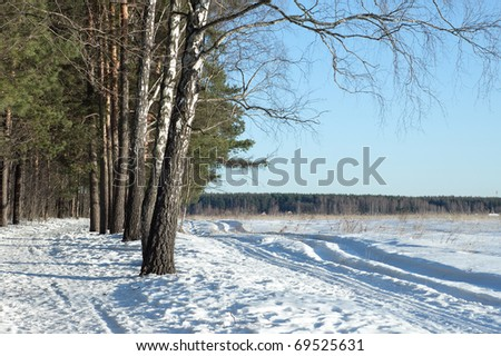 early spring - stock photo
