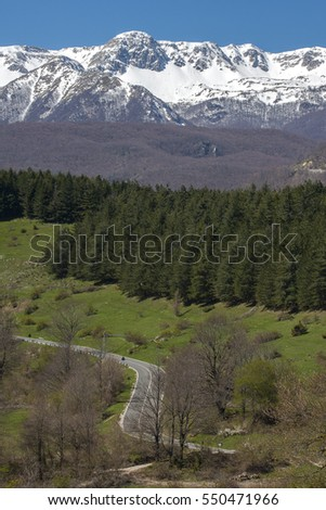 Early spring landscape in Italian mountains, green grass, blue sky and snowy mountain-tops.
