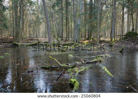 Early spring landscape of Landscape Reserve with frozen water in foreground - stock photo