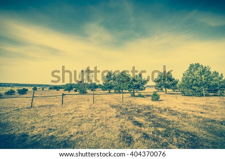 Early spring landscape of rural meadow - farm and pasture with dry grass, vintage photo - stock photo