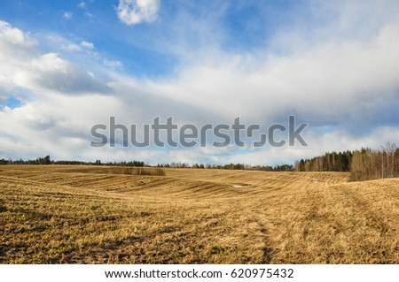 Early spring scene on the Russian fields under the blue cloudy sky