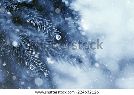 early winter in the forest, abstract natural backgrounds - stock photo