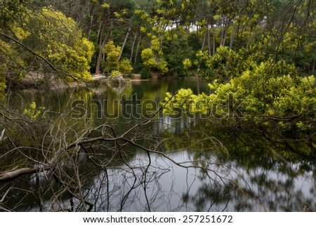 earnings Blue Lagoon, natural park Sintra-Cascais, Portugal - stock photo