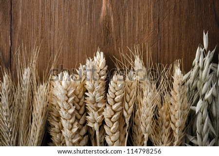 ears of cereals on wooden background - stock photo