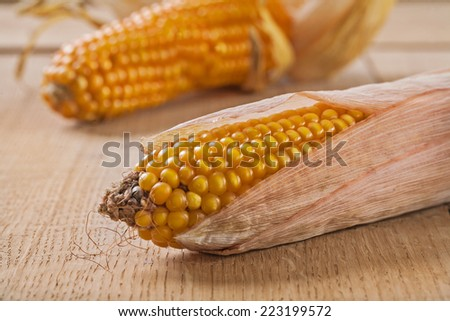 ears of corn on wooden boards very close up - stock photo