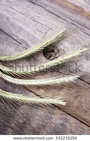 ears spike of wheat on wood texture background - stock photo