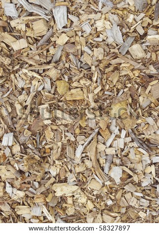 earth-tone background texture of  wood chips pine and cedar bark cuttings