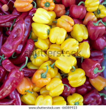 earth treasures, colorful bell peppers - stock photo