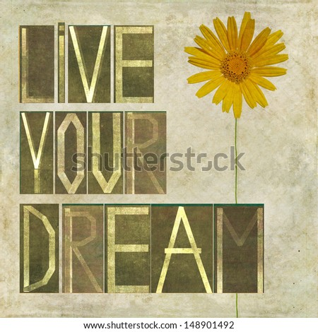 """Earthy background image and design element depicting the words """"Live your dream"""" - stock photo"""