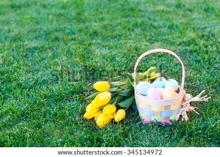 easter and spring concept, basket full of colorful eggs and yellow bright tulips on the grass