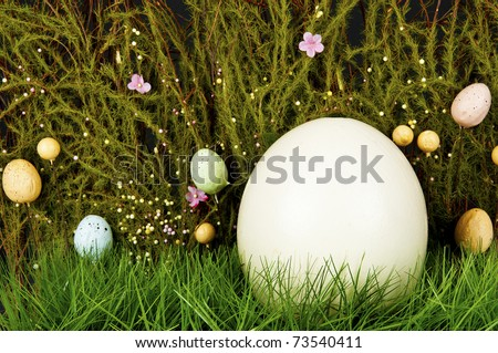 Easter background - blank ostrich-egg in green grass - stock photo