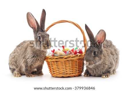 Easter basket and rabbits on a white background. - stock photo