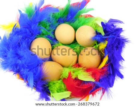 Easter boiled chicken eggs in a basket with colorful feathers - stock photo