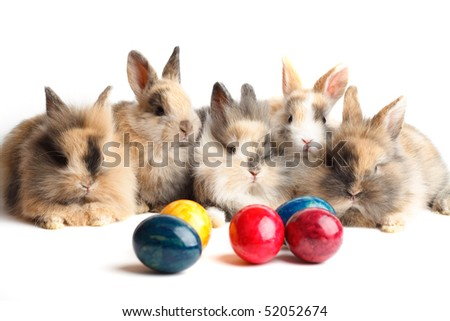 Easter bunnies with colored eggs isolated on white background - stock photo