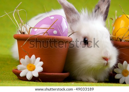 easter bunny hiding behind flowerpot with painted egg inside - stock photo